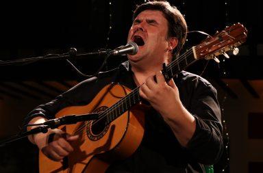 El cantaor y guitarrista Ricardo Fernández del Moral